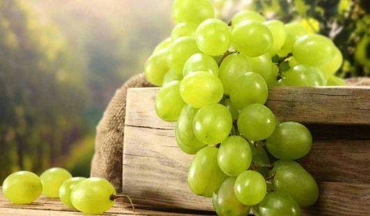 أضرار العنب على صحة الإنسان وخاصة المرأة الحامل ومرضى الكلى