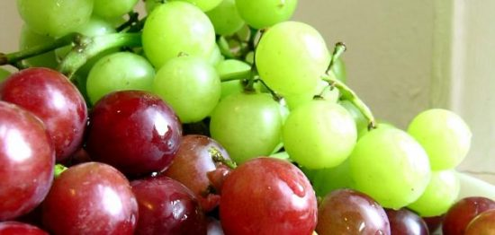 تفسير أكل العنب في الحلم حسب تفسيرات ابن شاهين للرجل والمرأة