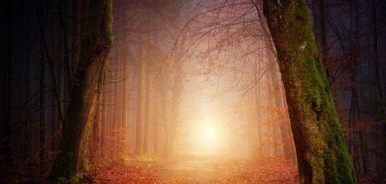 كيف نفرق بين الحلم والرؤيا وما هي الدلالات التي تشير إلى كلا منهما