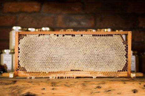 فوائد العسل لبشرة الوجه وإخفاء التجاعيد